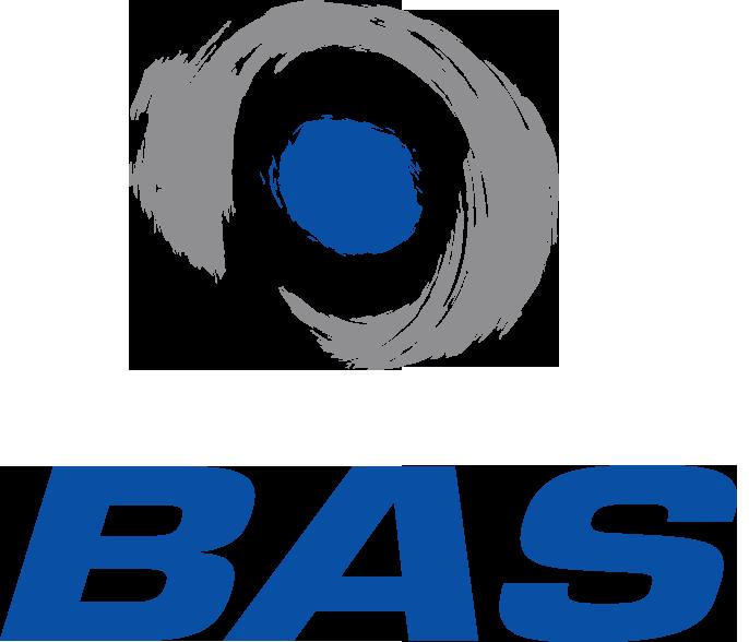BAS Holding