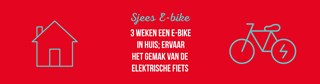 Sjees E-bike